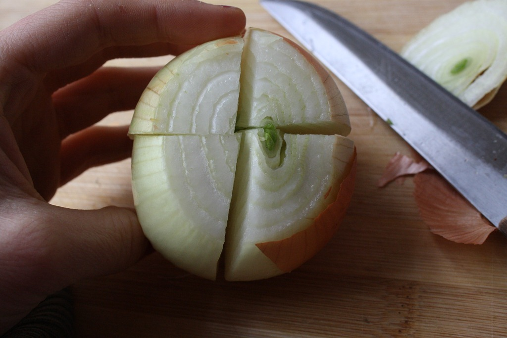 how to cut onion blossom